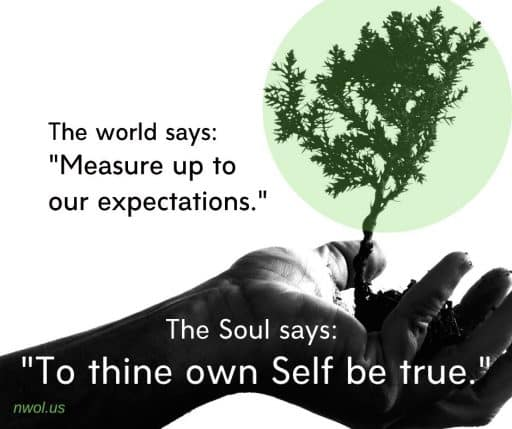 """The world says: """"Measure up to our expectations."""" The Soul says: """"To thine own Self be true."""""""