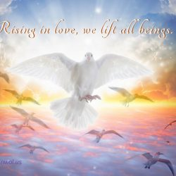 Rising in Love, we lift all beings