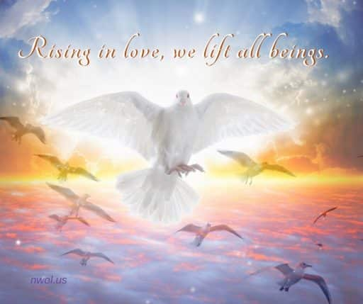 Rising in Love, we lift all beings.