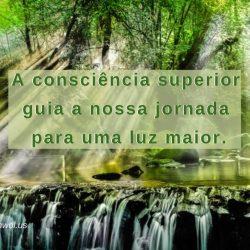 A consciencia superior
