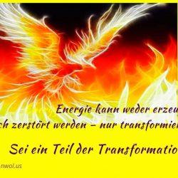 Energie kann weder erzeugt