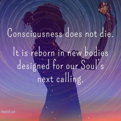 Consciousness does not die