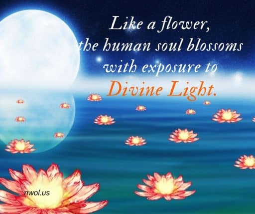 Like a flower, the human soul blossoms with exposure to Divine Light.