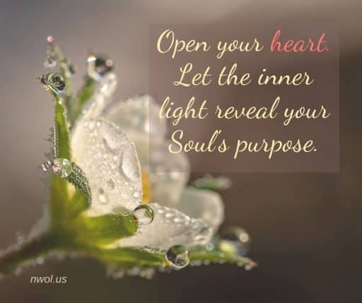 Open your heart. Let the inner light reveal your Soul's purpose.