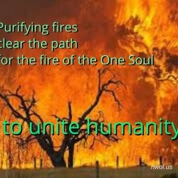 Purifying fires clear the path