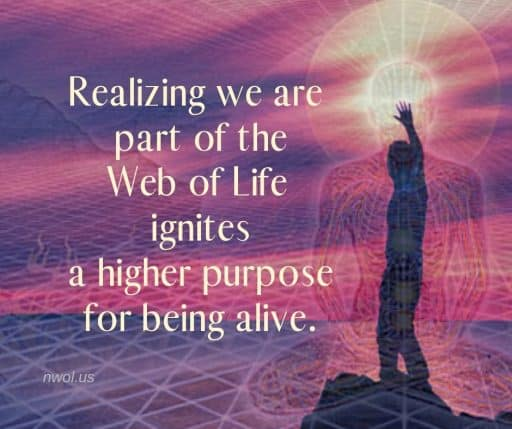 Realizing we are part of the Web of Life ignites a higher purpose for being alive.