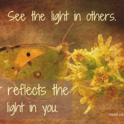See the light in others