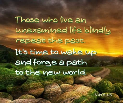 Those who live an unexamined life blindly repeat the past. It's time to wake up and forge a path to the new world.