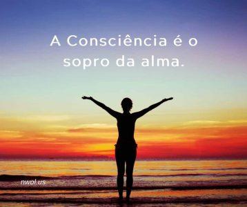 A Consciencia e o