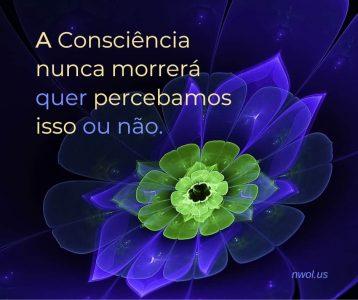 A Consciencia