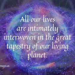 All our lives are intimately interwoven