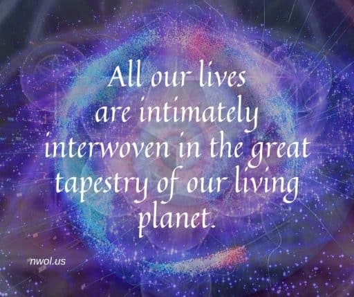 All our lives are intimately interwoven in the great tapestry of our living planet.
