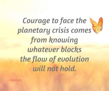 Courage to face the planetary crisis