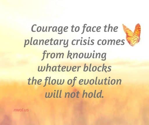 Courage to face the planetary crisis comes from knowing whatever blocks the flow of evolution will not hold.