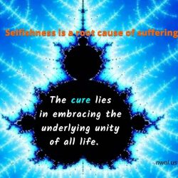 Selfishness is a root cause of suffering