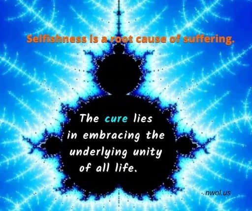 Selfishness is a root cause of suffering. The cure lies in embracing the underlying unity of all life.