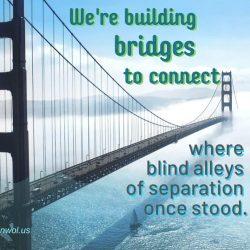 We are building bridges