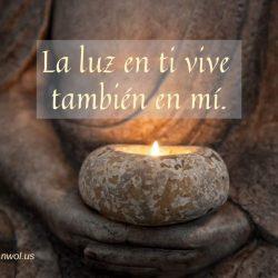 La luz en ti vive