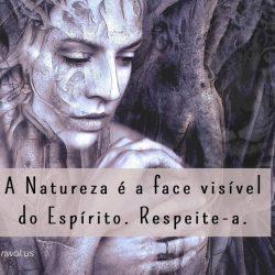 A Natureza e a face visivel