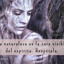La naturaleza es la cara visible