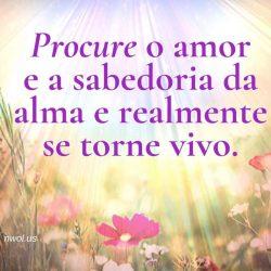 Procure o amor