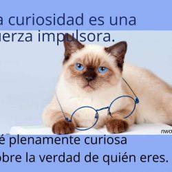 La curiosidad es una