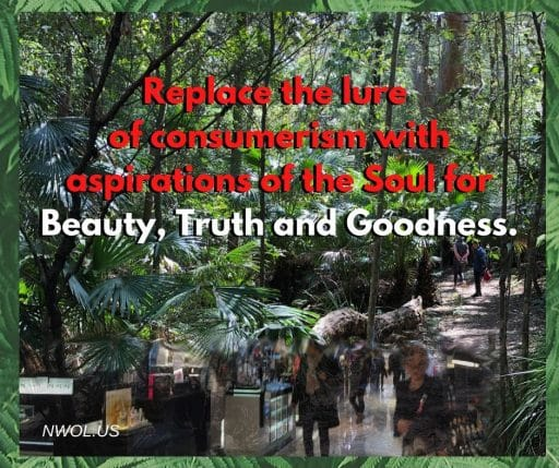 Replace the lure of consumerism with aspirations of the Soul — Beauty, Truth and Goodness.