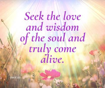 Seek the love and wisdom of the soul