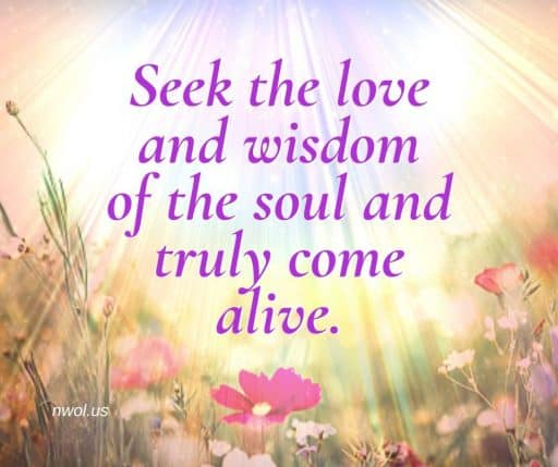 Seek the love and wisdom of the soul and truly come alive.