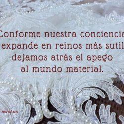 Conforme nuestra conciencia