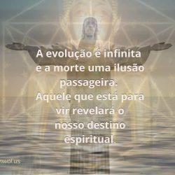 A evolucao e infinita
