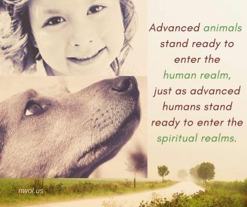 Advanced animals stand ready to enter the human realm