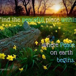 Find the peaceful place within