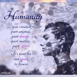 Humanity was created part animal part divine