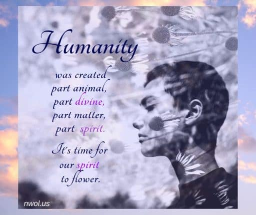 Humanity was created part animal, part divine, part matter, part spirit. It's time for our spirit to flower.