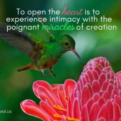 To open the heart