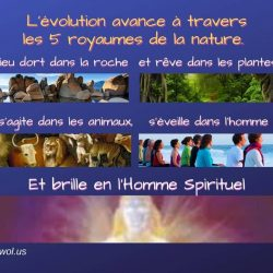 Levolution avabce a travers