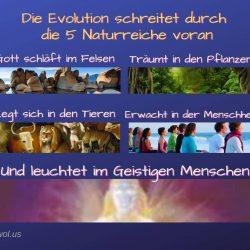 Die Evolution schreiter durch
