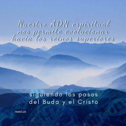 Nuestro ADN espiritual