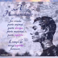 A Humanidade
