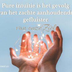 Pure intuitie is het gevolg