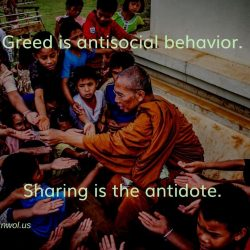 Greed is antisocial behaviour