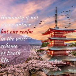 Humanity is not above nature
