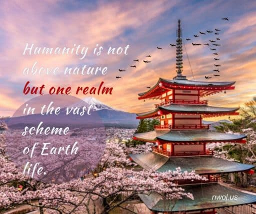 Humanity is not above nature but one realm in the vast scheme of Earth life.