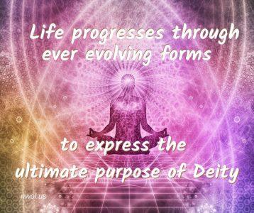 Life progresses through ever evolving forms