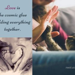 Love is the Cosmic glue