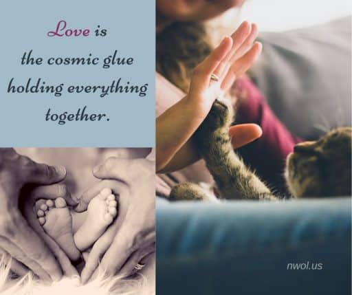 Love is the Cosmic glue holding everything together.