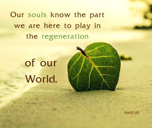 Our souls know the part we are to play in the regeneration of the world