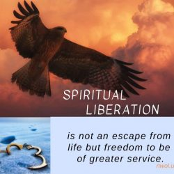 Spiritual liberation is not an escape from life