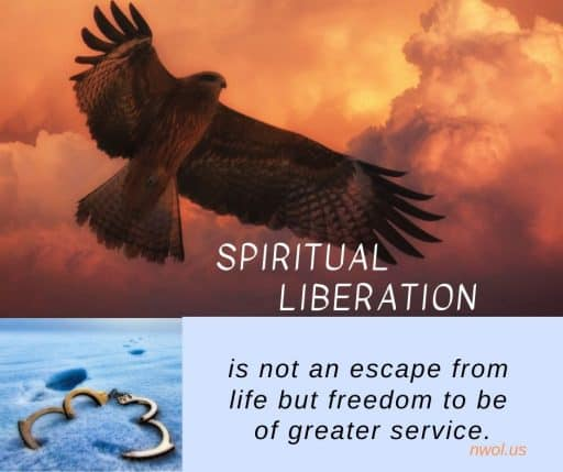 Spiritual liberation is not an escape from life but the freedom to be of greater service.